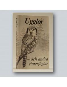 Ugglor - och andra vinterfåglar