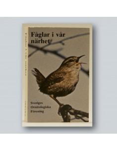 Fåglar i vår närhet